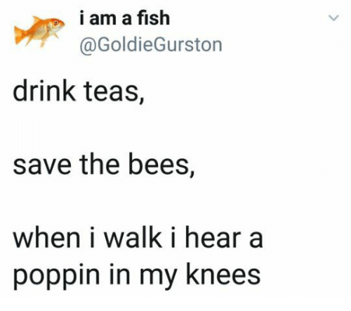 Fish, Bees, and Poppin: i am a fish  @GoldieGurston  drink teas,  save the bees,  when i walk i hear a  poppin in my knees