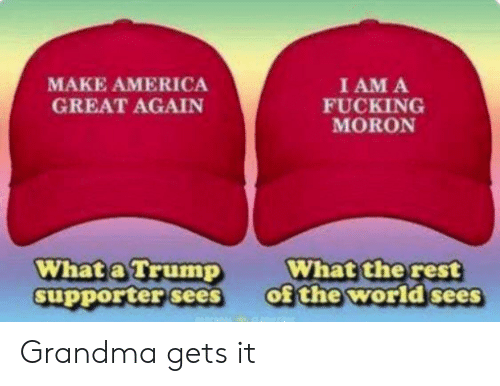 America, Fucking, and Grandma: I AM A  FUCKING  MORON  MAKE AMERICA  GREAT AGAIN  What the rest  of the world sees  What a Trump  supporter sees Grandma gets it