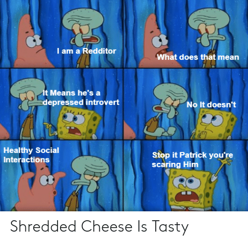 Introvert, Mean, and What Does: I am a Redditor  What does that mean  It Means he's a  depressed introvert  No It doesn't  Healthy Social  Interactions  Stop it Patrick you're  scaring Him Shredded Cheese Is Tasty