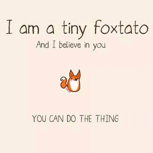 Do The Thing: I am a tiny foxtato  And I believe in you  YOU CAN DO THE THING