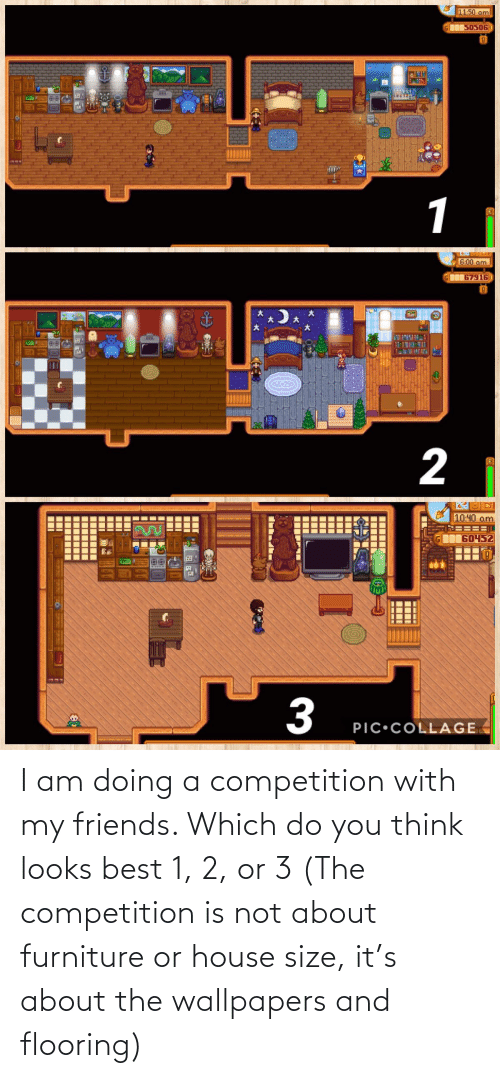competition: I am doing a competition with my friends. Which do you think looks best 1, 2, or 3 (The competition is not about furniture or house size, it's about the wallpapers and flooring)