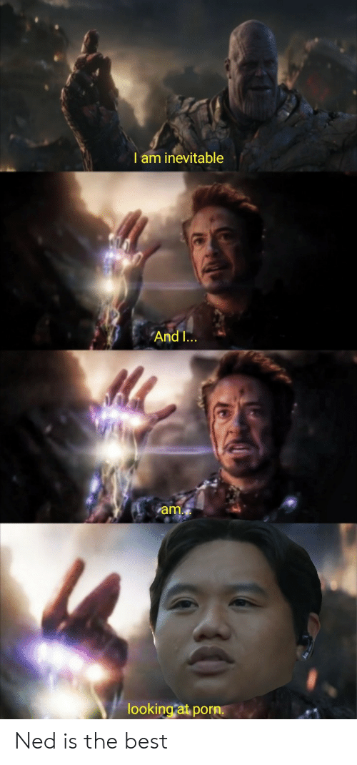 ned: I am inevitable  AndI...  am.  looking at porn. Ned is the best