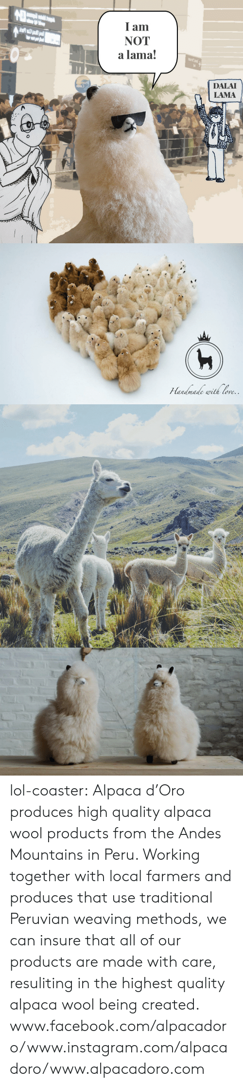 Ored: I am  NOT  a lama!  DALAI  LAMA   ore lol-coaster:  Alpaca d'Oro produces high quality alpaca wool products from the Andes Mountains in Peru. Working together with local farmers and produces that use traditional Peruvian weaving methods, we can insure that all of our products are made with care, resuliting in the highest quality alpaca wool being created.   www.facebook.com/alpacadoro/www.instagram.com/alpacadoro/www.alpacadoro.com