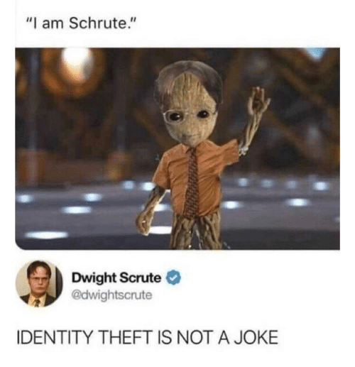"dwight: ""I am Schrute.""  Dwight Scrute O  @dwightscrute  IDENTITY THEFT IS NOT A JOKE"