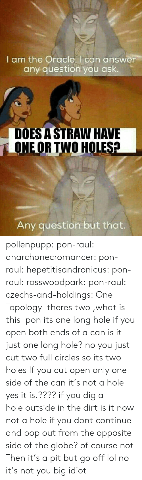Any Question: I am the Oracle. I can answer  any question you ask.  DOES A STRAW HAVE  ONEOR TWO HOLESA  Any question but that. pollenpupp:  pon-raul:   anarchonecromancer:   pon-raul:   hepetitisandronicus:  pon-raul:   rosswoodpark:  pon-raul:  czechs-and-holdings:  One Topology   theres two ,what is this   pon its one long hole   if you open both ends of a can is it just one long hole? no you just cut two full circles so its two holes   If you cut open only one side of the can it's not a hole   yes it is.???? if you dig a hole outside in the dirt is it now not a hole if you dont continue and pop out from the opposite side of the globe? of course not   Then it's a pit but go off lol   no it's not you big idiot