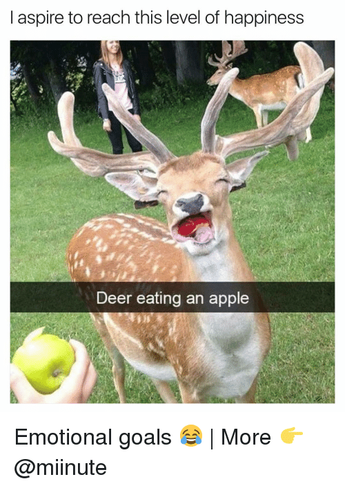 aspirated: I aspire to reach this level of happiness  Deer eating an apple Emotional goals 😂 | More 👉 @miinute