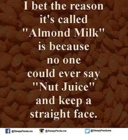 """Straight Faces: I bet the reason  I it's called  """"Almond Milk""""  is because  no one  could ever say  """"Nut Juice""""  and keep a  straight face.  If @sleepyPanda me  O @sleepy Panda.me  @sleepy Pandame"""