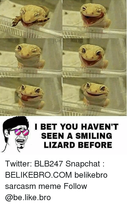 Sarcasmism: I BET YOU HAVEN'T  SEEN A SMILING  LIZARD BEFORE Twitter: BLB247 Snapchat : BELIKEBRO.COM belikebro sarcasm meme Follow @be.like.bro