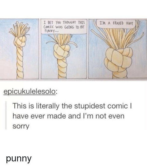 Punnies: I BET YOU THOUGHT THIS  IM A FRAED KNOT  COMIC WAS GOING TO BE  FUNNY  epicukulelesolo:  This is literally the stupidest comic l  have ever made and I'm not even  Sorry punny
