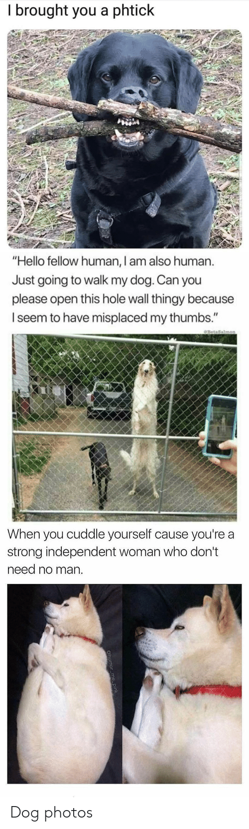 """Hello, Strong, and Dog: I brought you a phtick   """"Hello fellow human, I am also human.  Just going to walk my dog. Can you  please open this hole wall thingy because  I seem to have misplaced my thumbs.""""   When you cuddle yourself cause you're a  strong independent woman who don't  need no man Dog photos"""