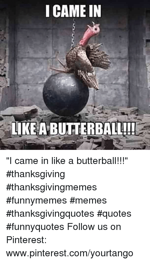 """Memes, Thanksgiving, and Pinterest: I CAME IN  LIKE A BUTTERBALL!! """"I came in like a butterball!!!"""" #thanksgiving #thanksgivingmemes #funnymemes #memes #thanksgivingquotes #quotes #funnyquotes Follow us on Pinterest: www.pinterest.com/yourtango"""