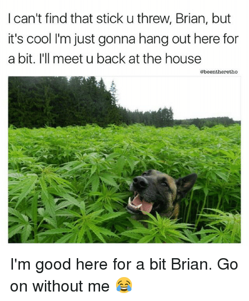 sticked: I can't find that stick u threw, Brian, but  it's cool I'm just gonna hang out here for  a bit. I'll meet u back at the house  @beentheretho I'm good here for a bit Brian. Go on without me 😂