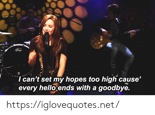 Hello, Too High, and Net: I can't set my hopes too high cause'  every hello ends with a goodbye. https://iglovequotes.net/