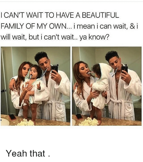 Beautiful, Family, and Memes: I CAN'T WAIT TO HAVE A BEAUTIFUL  FAMILY OF MY OWN... i mean i can wait, & i  will wait, but i can't wait.. ya know? Yeah that .