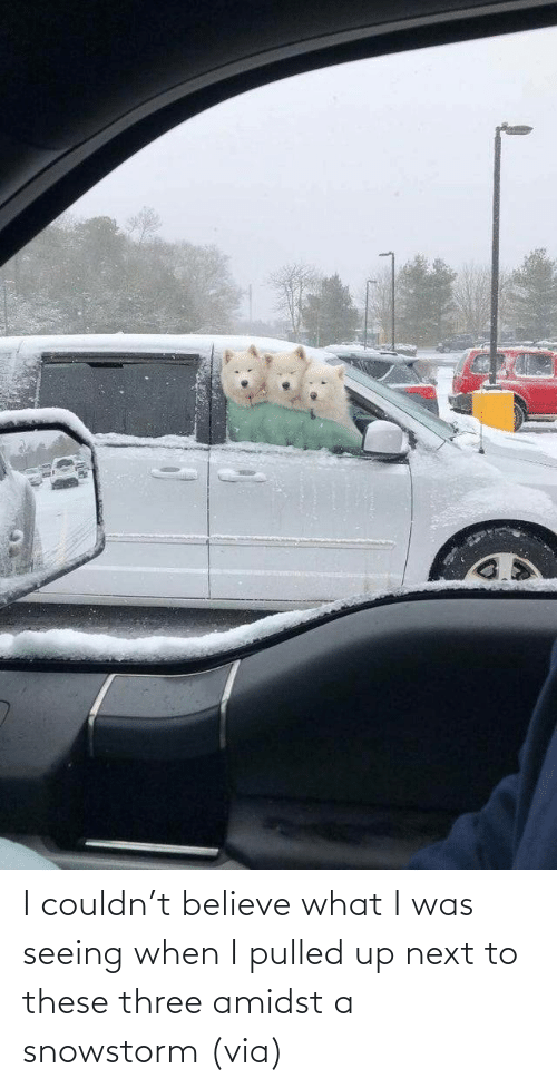 When I: I couldn't believe what I was seeing when I pulled up next to these three amidst a snowstorm (via)