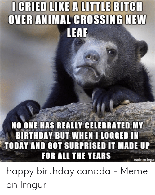 Canada Meme: I CRIED LIKE A LITTLE BITCH  OVER ANIMAL CROSSING NEW  LEAF  NO ONE HAS REALLY CELEBRATED MY  BIRTHDAY BUT WHEN I LOGGED IN  TODAY AND GOT SURPRISED IT MADE UP  FOR ALL THE YEARS  made on imgur