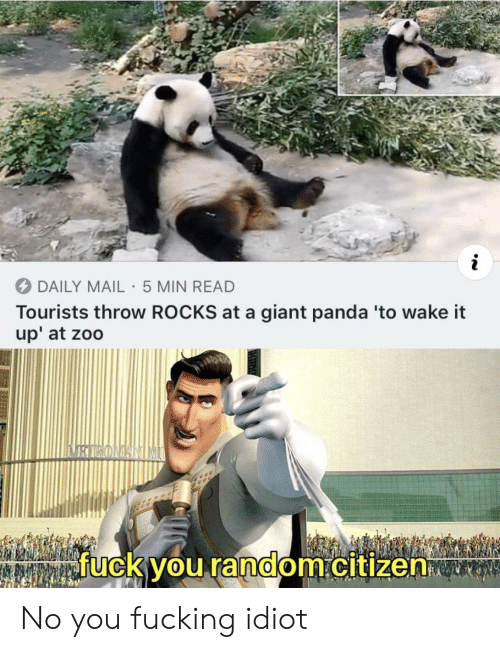 giant panda: i  DAILY MAIL 5 MIN READ  Tourists throw ROCKS at a giant panda 'to wake it  up' at zoo  fuck you random.citizen No you fucking idiot