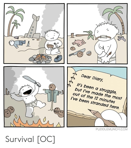 Struggle, Been, and Com: I.  Dear Diary,  It's been a struggle,  but I've made the most  out of the 12 minutes  I've been stranded here.  PUDDLEMUNCH.COM Survival [OC]
