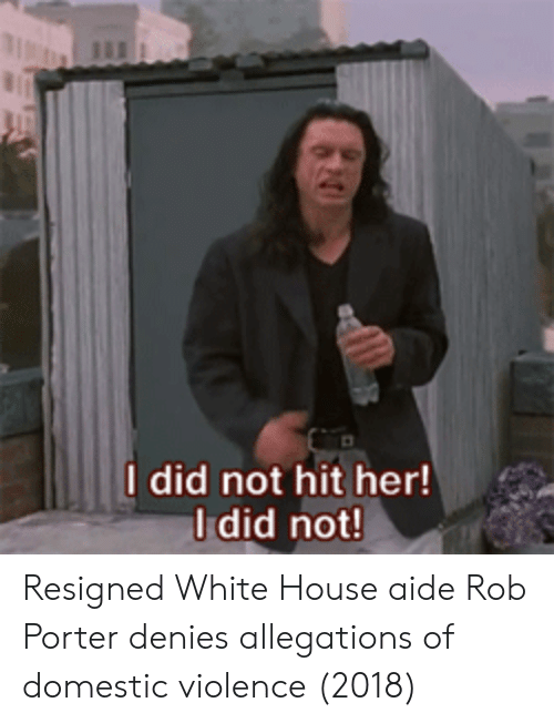 Aide: I did not hit her!  Idid not Resigned White House aide Rob Porter denies allegations of domestic violence (2018)