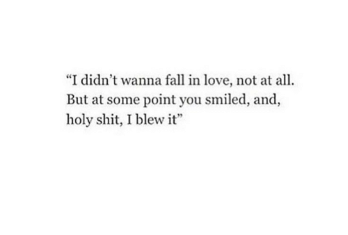 """All But: """"I didn't wanna fall in love, not at all.  But at some point you smiled, and,  holy shit, I blew it"""""""