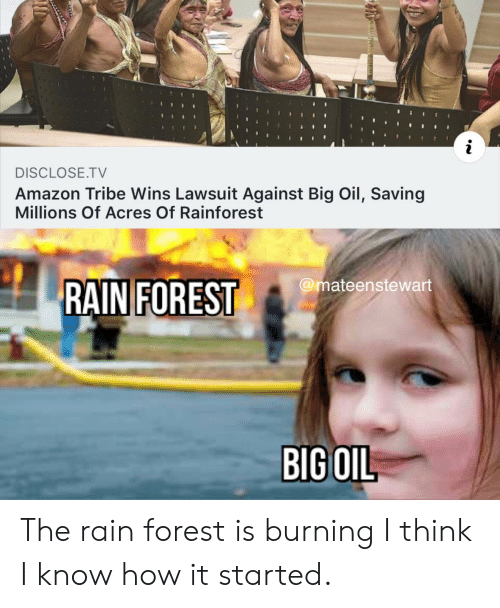 Acres: i  DISCLOSE.TV  Amazon Tribe Wins Lawsuit Against Big Oil, Saving  Millions Of Acres Of Rainforest  @mateenstewart  RAIN FOREST  BIG OIL The rain forest is burning I think I know how it started.