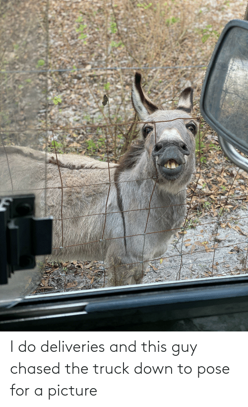 Down To: I do deliveries and this guy chased the truck down to pose for a picture