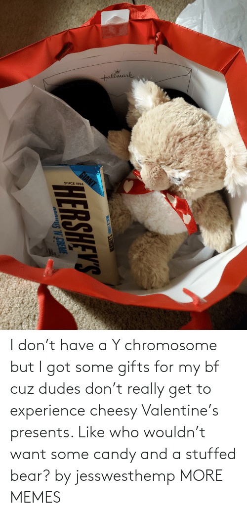 really: I don't have a Y chromosome but I got some gifts for my bf cuz dudes don't really get to experience cheesy Valentine's presents. Like who wouldn't want some candy and a stuffed bear? by jesswesthemp MORE MEMES