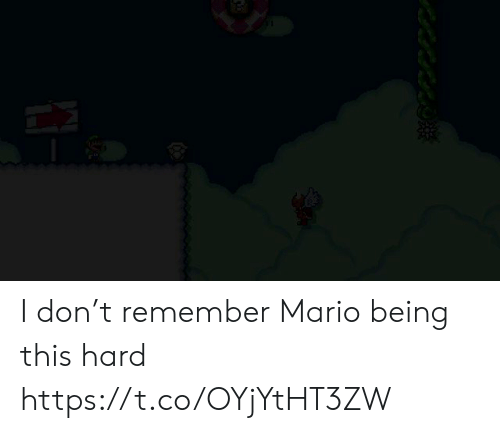 Mario, Don, and Remember: I don't remember Mario being this hard https://t.co/OYjYtHT3ZW