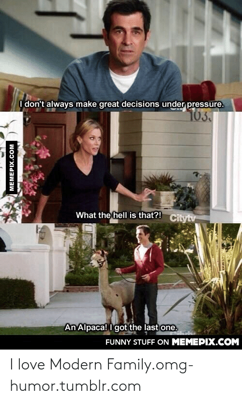 Always Make: I don't always make great decisions under pressure.  103.  What the hell is that?! Citytv  An Alpaca! I got the last one.  FUNNY STUFF ON MEMEPIX.COM  MEMEPIX.COM I love Modern Family.omg-humor.tumblr.com