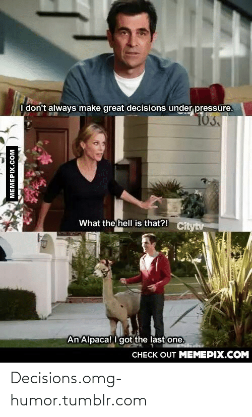Always Make: I don't always make great decisions under pressure.  103.  What the hell is that?!  Citytv  An Alpaca! I got the last one.  CНЕCK OUT MEМЕРIХ.COM  MEMEPIX.COM Decisions.omg-humor.tumblr.com