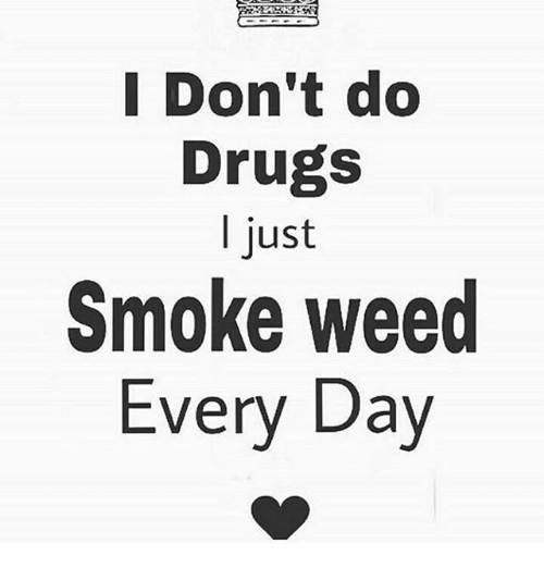 smoke weed every day: I Don't do  Drugs  just  Smoke weed  Every Day