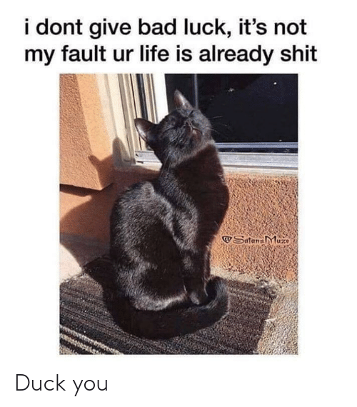 Bad, Life, and Shit: i dont give bad luck, it's not  my fault ur life is already shit Duck you