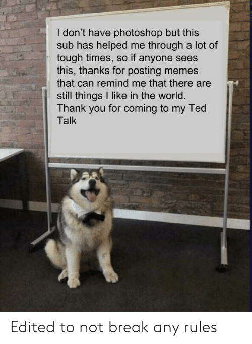 Memes, Photoshop, and Ted: I don't have photoshop but this  sub has helped me through a lot of  tough times, so if anyone sees  this, thanks for posting memes  that can remind me that there are  still things I like in the world  Thank you for coming to my Ted  Talk Edited to not break any rules