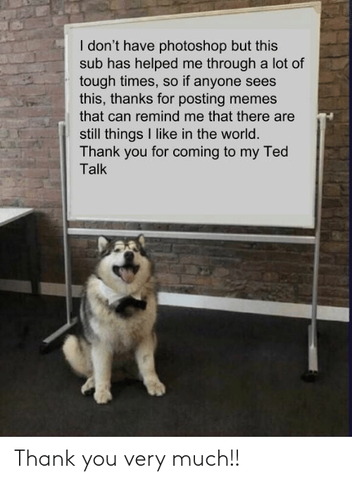 Memes, Photoshop, and Ted: I don't have photoshop but this  sub has helped me through a lot of  tough times, so if anyone sees  this, thanks for posting memes  that can remind me that there are  still things I like in the world.  Thank you for coming to my Ted  Talk Thank you very much!!