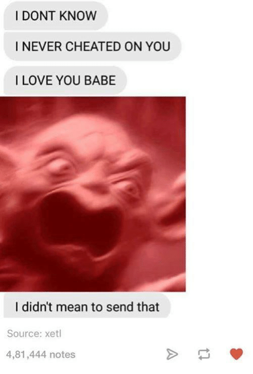 i love you babe: I DONT KNOW  I NEVER CHEATED ON YOU  I LOVE YOU BABE  I didn't mean to send that  Source: xetl  4,81,444 notes