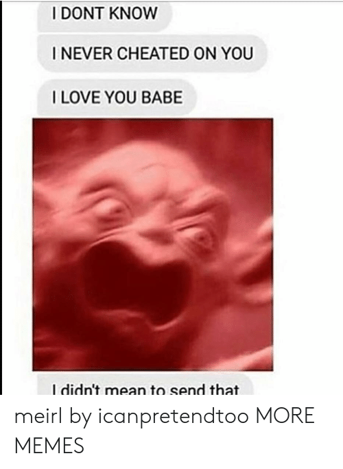 i love you babe: I DONT KNOW  I NEVER CHEATED ON YOU  I LOVE YOU BABE  I didn't mean to send that meirl by icanpretendtoo MORE MEMES