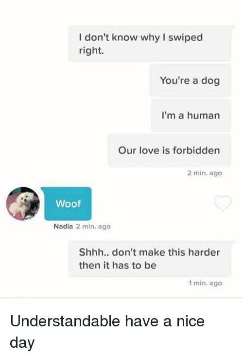 Nadia: I don't know why I swiped  right.  You're a dog  I'm a human  Our love is forbidden  2 min. ago  Woof  Nadia 2 min. ago  Shhh.. don't make this harder  then it has to be  1 min. ago Understandable have a nice day