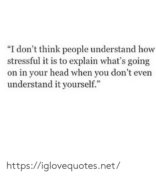 """Head, How, and Net: """"I don't think people understand how  stressful it is to explain what's going  on in your head when you don't even  understand it yourself."""" https://iglovequotes.net/"""