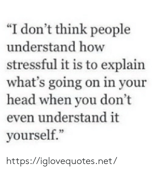 "i-dont-think: ""I don't think people  understand how  stressful it is to explain  what's going on in your  head when you don't  even understand it  yourself."" https://iglovequotes.net/"