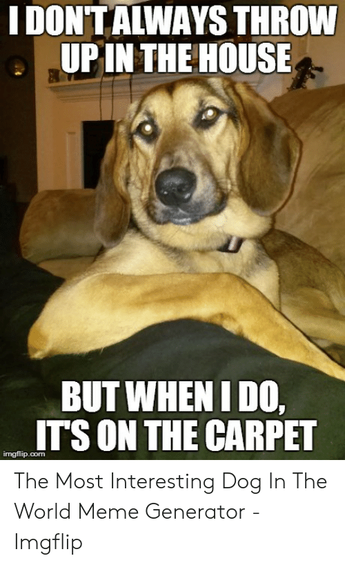 Generator Imgflip: I DONTAIWAYS THROW  UPIN THEHOUSE  BUT WHENIDO,  ITS ON THE CARPET  ingflip.com The Most Interesting Dog In The World Meme Generator - Imgflip