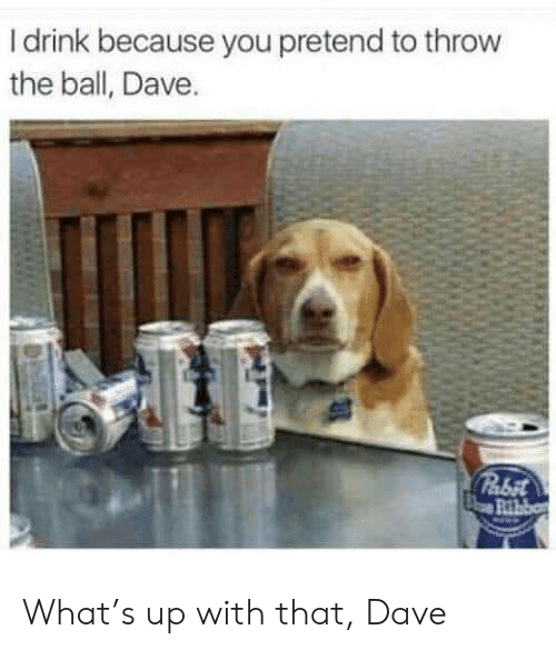 You, Ball, and Dave: I drink because you pretend to throw  the ball, Dave.  Pabit  Ribb What's up with that, Dave