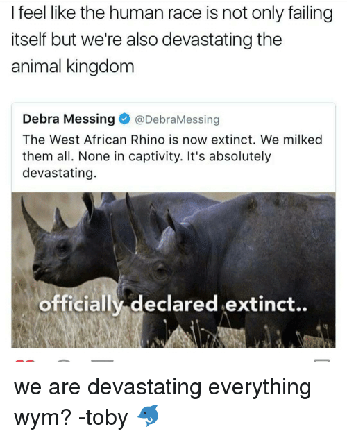 captivating: I feel like the human race is not only failing  itself but we're also devastating the  animal kingdom  Debra Messing  @DebraMessing  The West African Rhino is now extinct. We milked  them all. None in captivity. It's absolutely  devastating.  officially declared extinct.. we are devastating everything wym? -toby 🐬