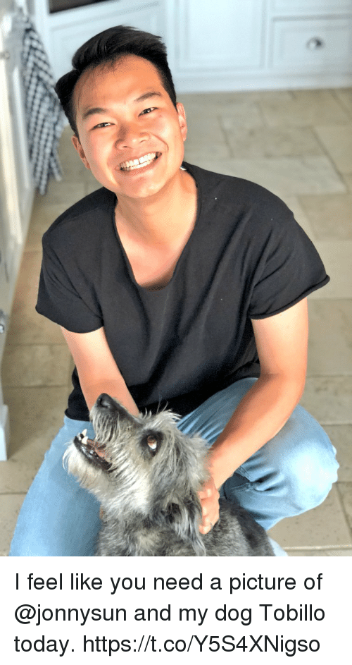 Memes, Today, and A Picture: I feel like you need a picture of @jonnysun and my dog Tobillo today. https://t.co/Y5S4XNigso