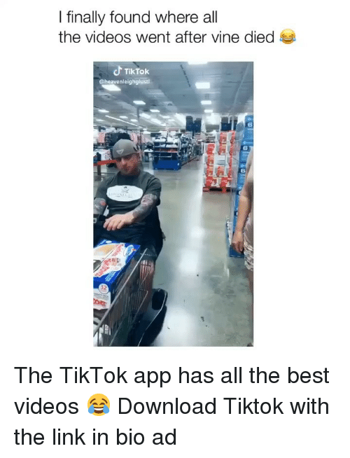 Memes, Videos, and Vine: I finally found where all  the videos went after vine died  TikTok  @heavenleighglusti  6  6  6  32 The TikTok app has all the best videos 😂 Download Tiktok with the link in bio ad