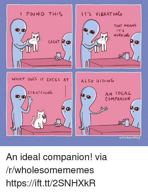 Work, Excel, and What Does: I FOUN D THIS  I T 's  VIBRATING  THAT MEANS  IT'S  WORK ING  冫웃  GREAT  均  WHAT DOES IT EXCEL AT  AL So HIDING  AN IDEAL  COMPANION  S CRATCHING  NATHANWPYLE An ideal companion! via /r/wholesomememes https://ift.tt/2SNHXkR