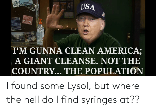 The Hell: I found some Lysol, but where the hell do I find syringes at??