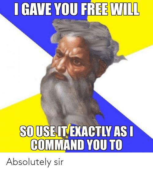 Funny, Free, and Will: I GAVE YOU FREE WILL  SO USE IT EXACTLY AS I  COMMAND YOU TO Absolutely sir