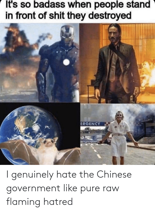 genuinely: I genuinely hate the Chinese government like pure raw flaming hatred