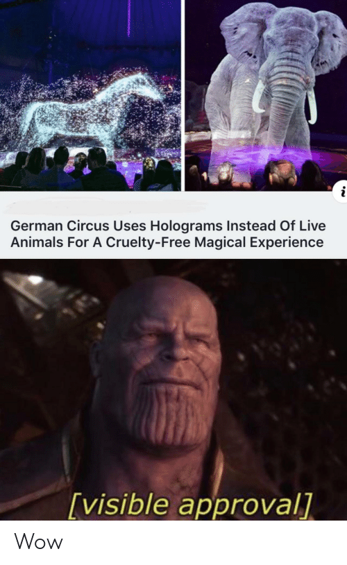 Approval: i  German Circus Uses Holograms Instead Of Live  Animals For A Cruelty-Free Magical Experience  [visible approval] Wow