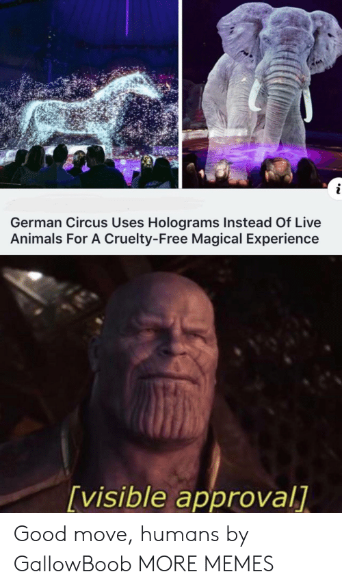Cruelty: i  German Circus Uses Holograms Instead Of Live  Animals For A Cruelty-Free Magical Experience  [visible approval] Good move, humans by GallowBoob MORE MEMES